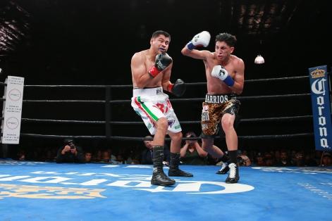 BA4V1887_06_11_2017_Fight_Nabeel Ahmad _ Premier Boxing Champions