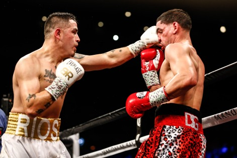 LR_SHO-FIGHT NIGHT-GARCIA VS RIOS-TRAPPFOTOS-02172018-0320